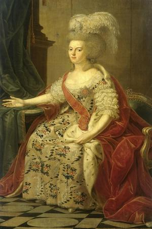 Frederika Sophia Wilhelmina of Prussia, Wife of Prince Willem V