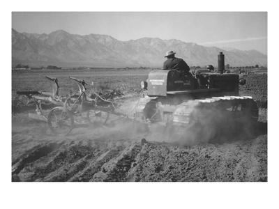 Benji Iguchi Driving Tractor in Field-Ansel Adams-Art Print