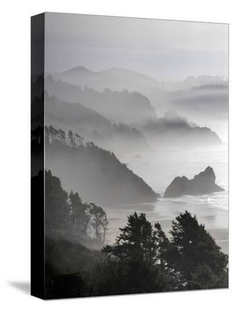 A Foggy Day on the Oregon Coast Just South of Cannon Beach.
