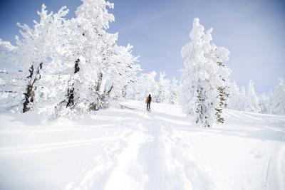 A Young Man Enjoying Backcountry Skiing on Mt. Tumalo, Oregon Cascades