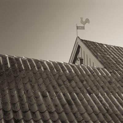 Skagen Roof Tiles
