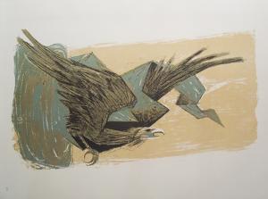 Sky Hawk by Benton Spruance
