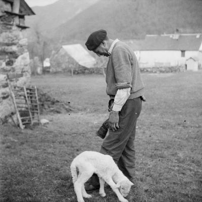 Berger et agneau--Giclee Print