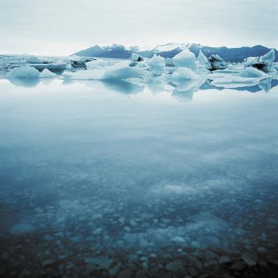 Bergy Bits Near Pack Ice--Photographic Print