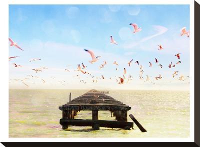 Berkeley Marina-Mina Teslaru-Stretched Canvas Print