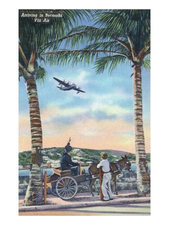 https://imgc.artprintimages.com/img/print/bermuda-airplane-arriving-on-the-island_u-l-q1gp1d30.jpg?p=0