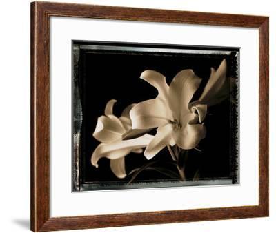 Bermuda Lilies-Talli Rosner-Kozuch-Framed Art Print