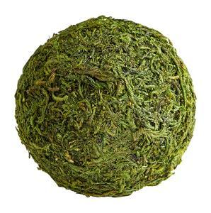 Bermuda Moss Sphere - Small