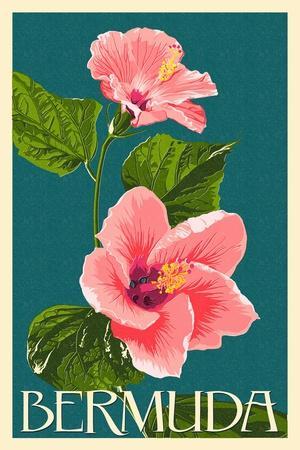 https://imgc.artprintimages.com/img/print/bermuda-pink-hibiscus_u-l-q1gpqo90.jpg?p=0