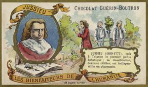 Bernard De Jussieu, French Naturalist