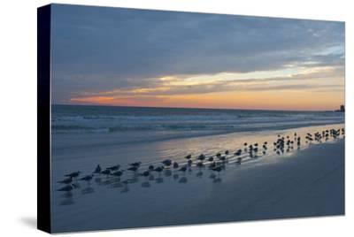 Cloudy Sunset on Crescent Beach, Siesta Key, Sarasota, Florida, USA
