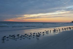 Cloudy Sunset on Crescent Beach, Siesta Key, Sarasota, Florida, USA by Bernard Friel