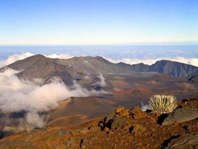 Haleakala Crater From Crater Rim and Silversword in Foreground Haleakala National Park, Maui, HI by Bernard Friel