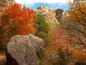 Usa. Texas, Guadalupe Mountain, Mckittrick Canyon Hiking Trail by Bernard Friel