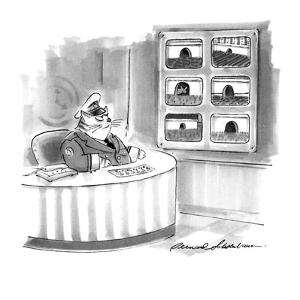 Cat security guard watches mousehole on closed-circuit TV. - New Yorker Cartoon by Bernard Schoenbaum