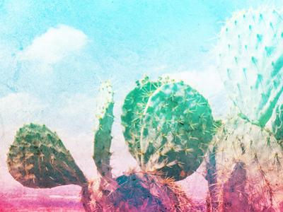 Photograph of Some Green Nopal Cactuses and Color Gradient by bernardojbp