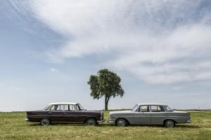 Mercedes 220 Sb, Type W 111, Year of Manufacture 1963, 105 Hp, and Mercedes 200 by Bernd Wittelsbach
