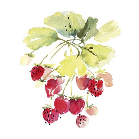 Berries-Kelly Ventura-Art Print displayed on a wall