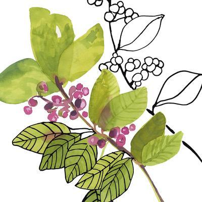 https://imgc.artprintimages.com/img/print/berry-bloom-ii_u-l-f7a36d0.jpg?p=0