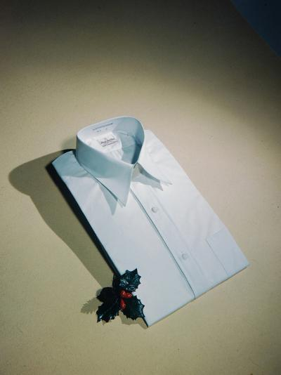 Best Selling Christmas Gifts - Pressed Shirt-Nina Leen-Photographic Print