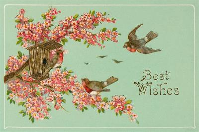 Best Wishes, Bird House--Art Print