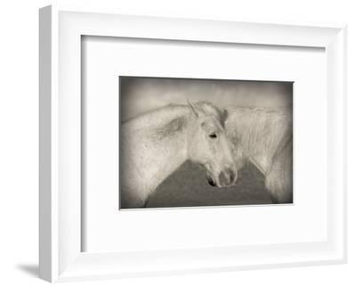 Besties-Valda Bailey-Framed Photographic Print