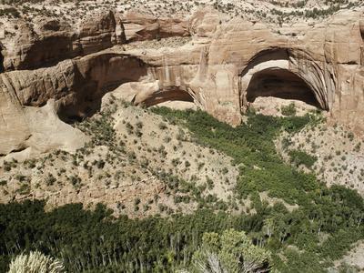 https://imgc.artprintimages.com/img/print/betatakin-anasazi-cliff-dwelling-site-north-eastern-arizona-usa_u-l-q1fogcb0.jpg?p=0