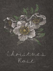Chalkboard Christmas Greenery III by Beth Grove