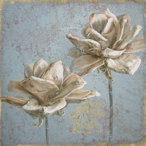 Seed Pod II no Words by Beth Grove