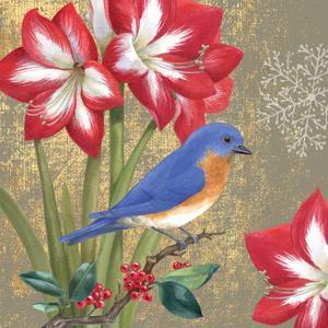 Winter Birds Bluebird by Beth Grove