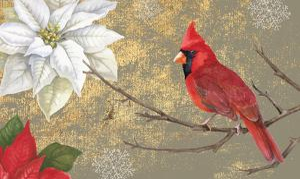 Winter Birds Cardinal 16x16 by Beth Grove