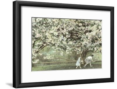 Under the Apple Blossom Tree