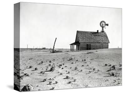 Dust Bowl Farm in Texas
