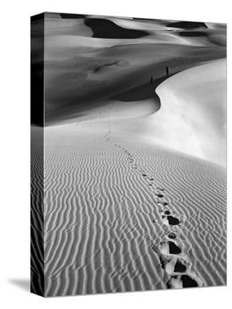 Footprints on Desert Dunes