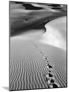 Footprints on Desert Dunes by Bettmann