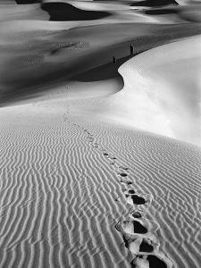 Footprints on Desert Dunes by Bettmann
