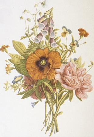 Illustration Depicting a Bouquet of Poppies, Carnations and Foxglove