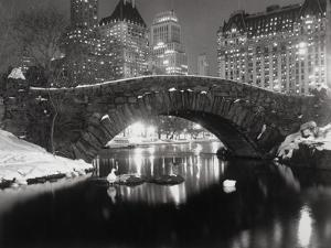 New York Pond in Winter by Bettmann