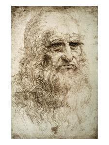 Self-Portrait by Leonardo da Vinci by Bettmann