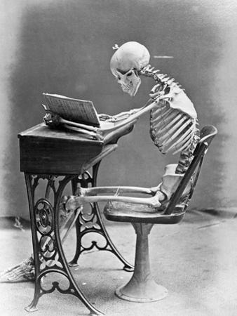 Skeleton Reading at Desk