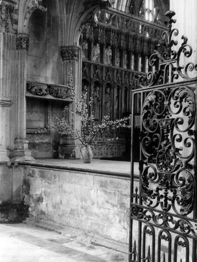 Beverley Minster Gate--Photographic Print