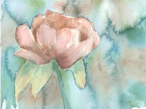 Blush Rose by Beverly Dyer