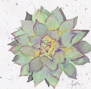Cactus 1 by Beverly Dyer