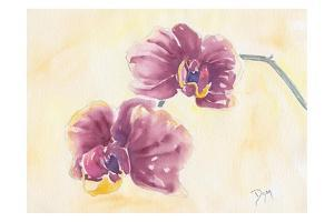 Graceful Orchid by Beverly Dyer