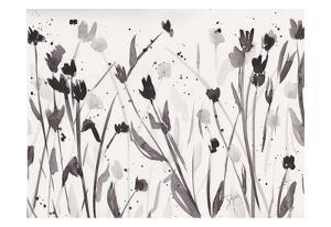 Noir Meadow by Beverly Dyer