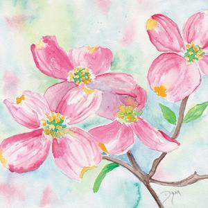 Pink Dogwood II by Beverly Dyer
