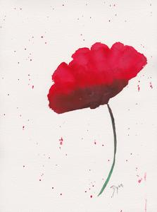 Red Poppy 2 by Beverly Dyer