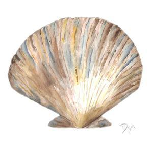 Sea Shell Neutral 2 by Beverly Dyer