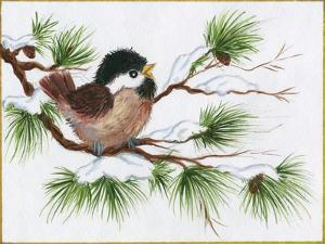 Chickadee on a Pine Tree by Beverly Johnston