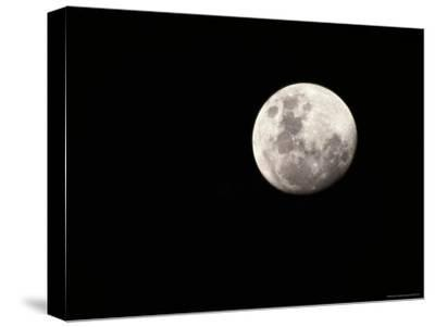 Large, Clear-Featured Moon on a Black Background, Chobe National Park, Botswana